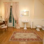 bathroom that looks like a living room