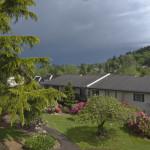 backyard coming storms