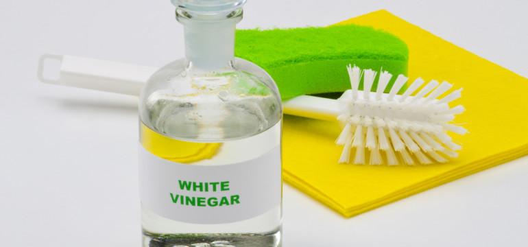 white vinegar cleaner