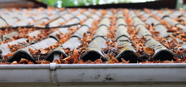 autumn leaves on roof and gutters