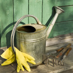 fall garden watering can gloves spade