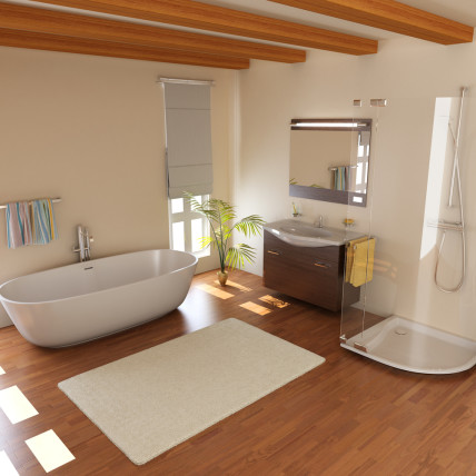 laminate floor bathroom