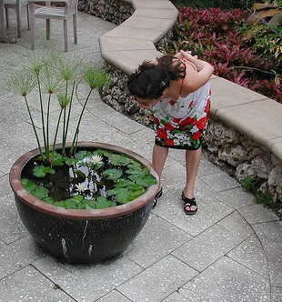 Water Feature Options For Gardens and Yards
