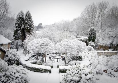 Bon Winter Garden Backyard