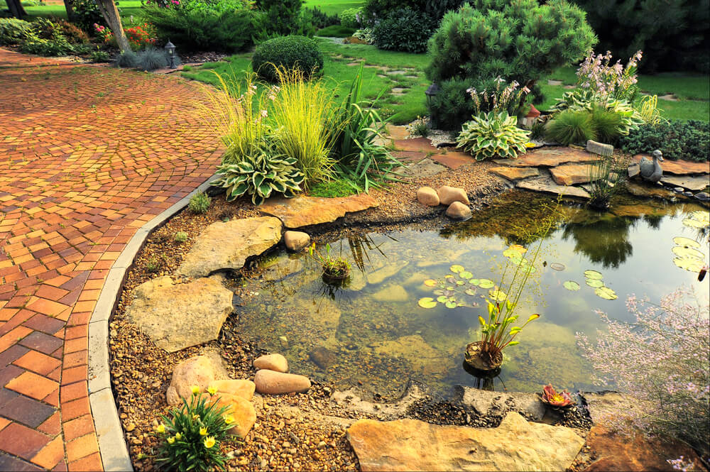 Bug off making your outdoor space unfriendly to mosquitos for Preparing pond water for fish