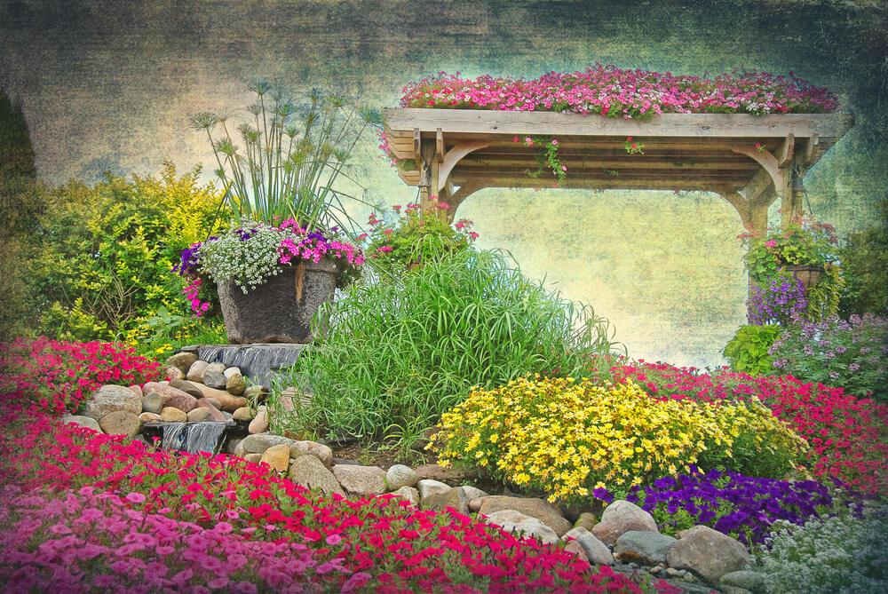 wildflower rock garden
