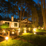 house in the woods night solar lights