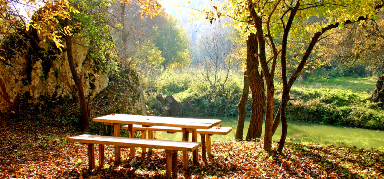 picnic table autumn