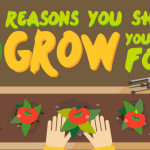5 reasons to grow own food thumb