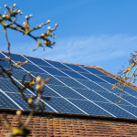 solar panels roof branches