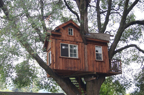 how to build a basic treehouse