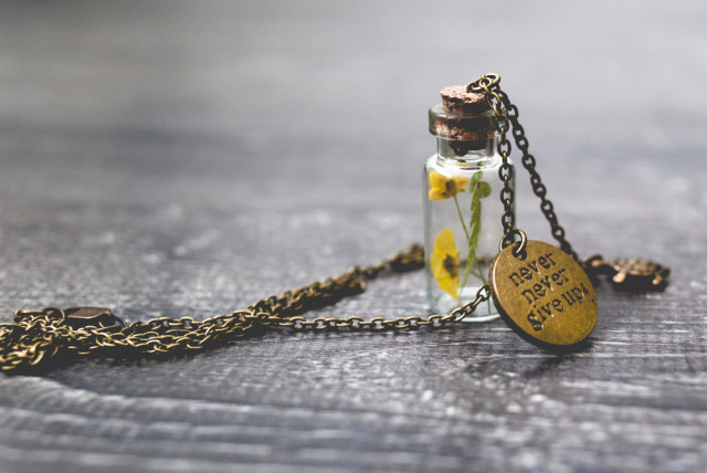 dried flowers pendant never give up