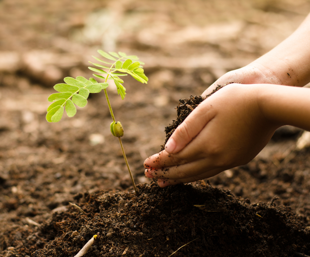 gardening with your kids getting their hands dirty