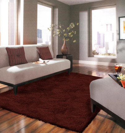 bamboo fiber area rug and wood flooring living room