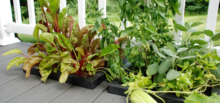 wellspring-dropin-deck-planter-veggies