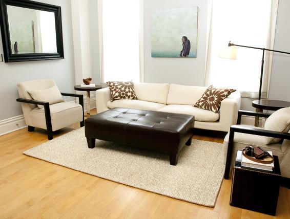 jute area rug living room