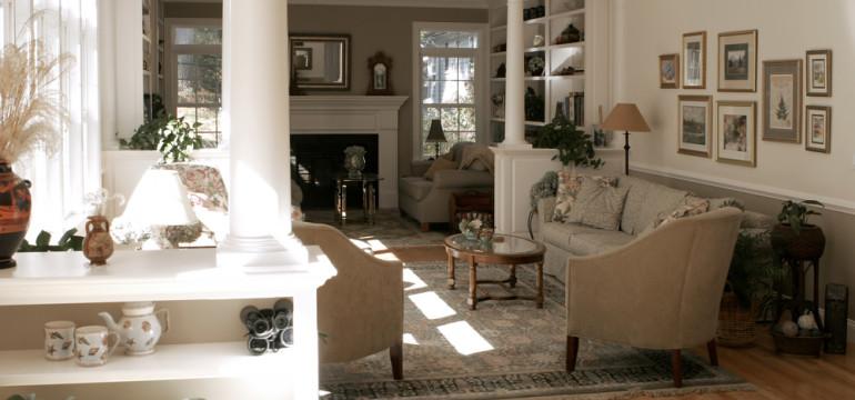 living room houseplants shelving natural light