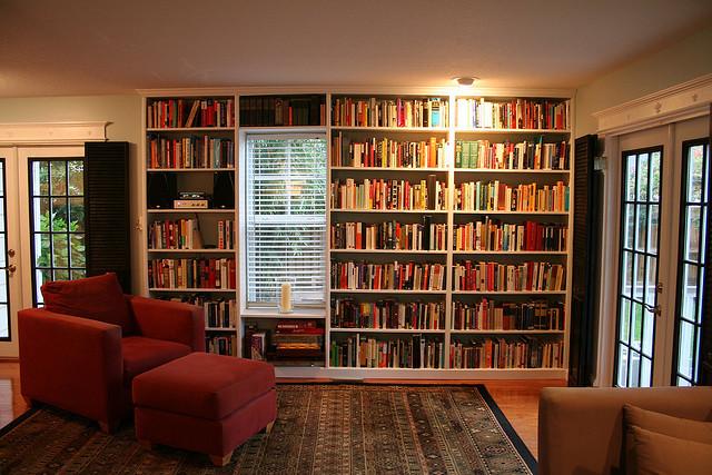 stylish bookshelves living room french doors rug