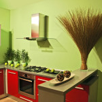 modern kitchen bold colors