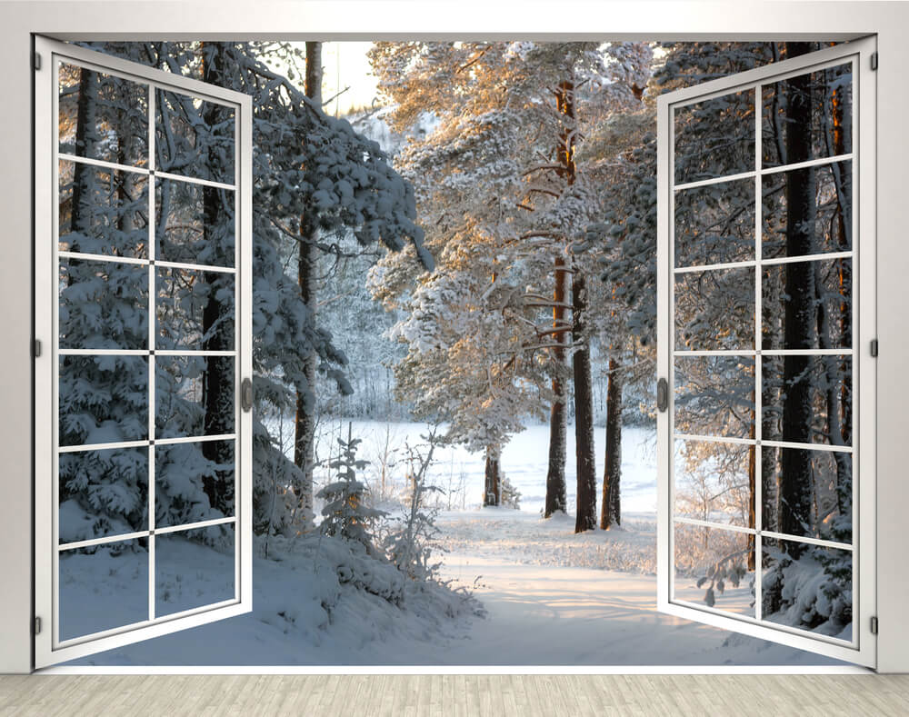 Landscaping planning a winter landscape out your window for Sleeping with window open in winter
