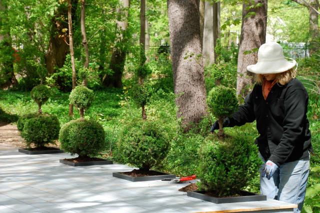 wellspring-dropin-planter-garndener