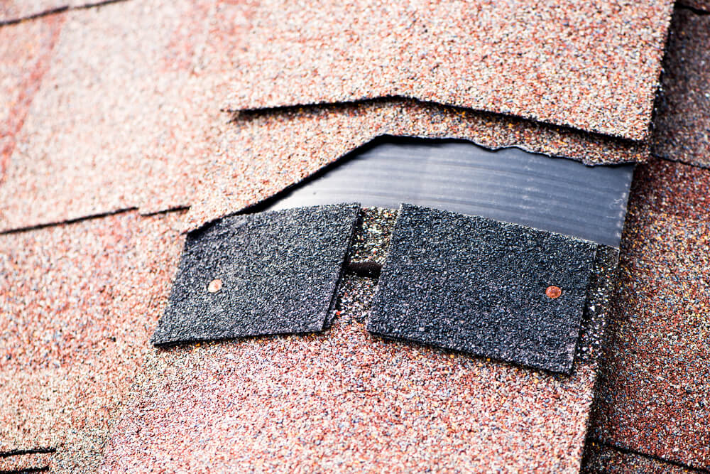 signs that your roof needs replacement