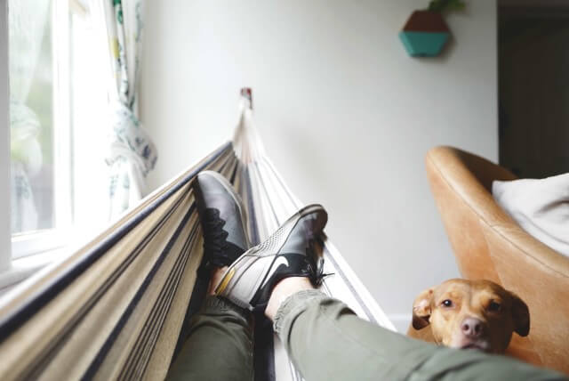 hang in there  what to look for when buying a hammock  rh   builddirect
