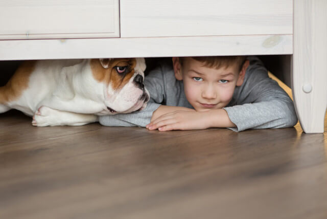 dog and kid on floor