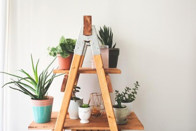 ladder-plant-shelf_925x