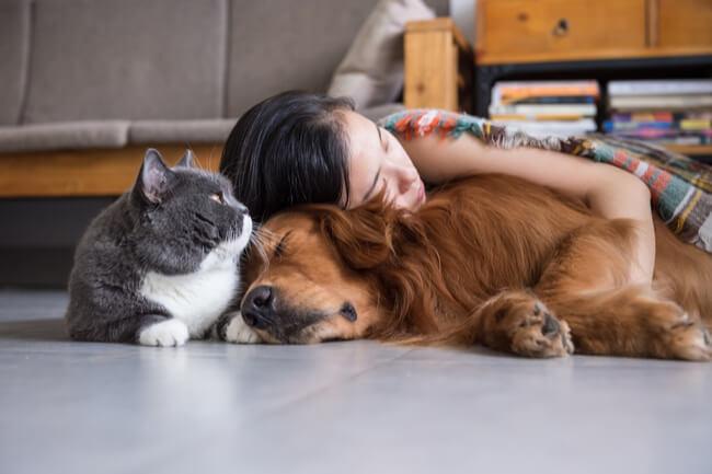 nap at home