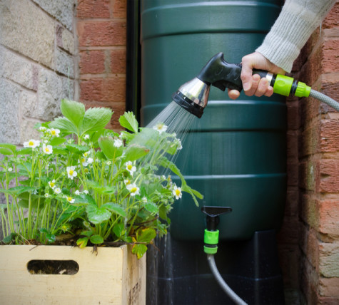 rain barrel at home