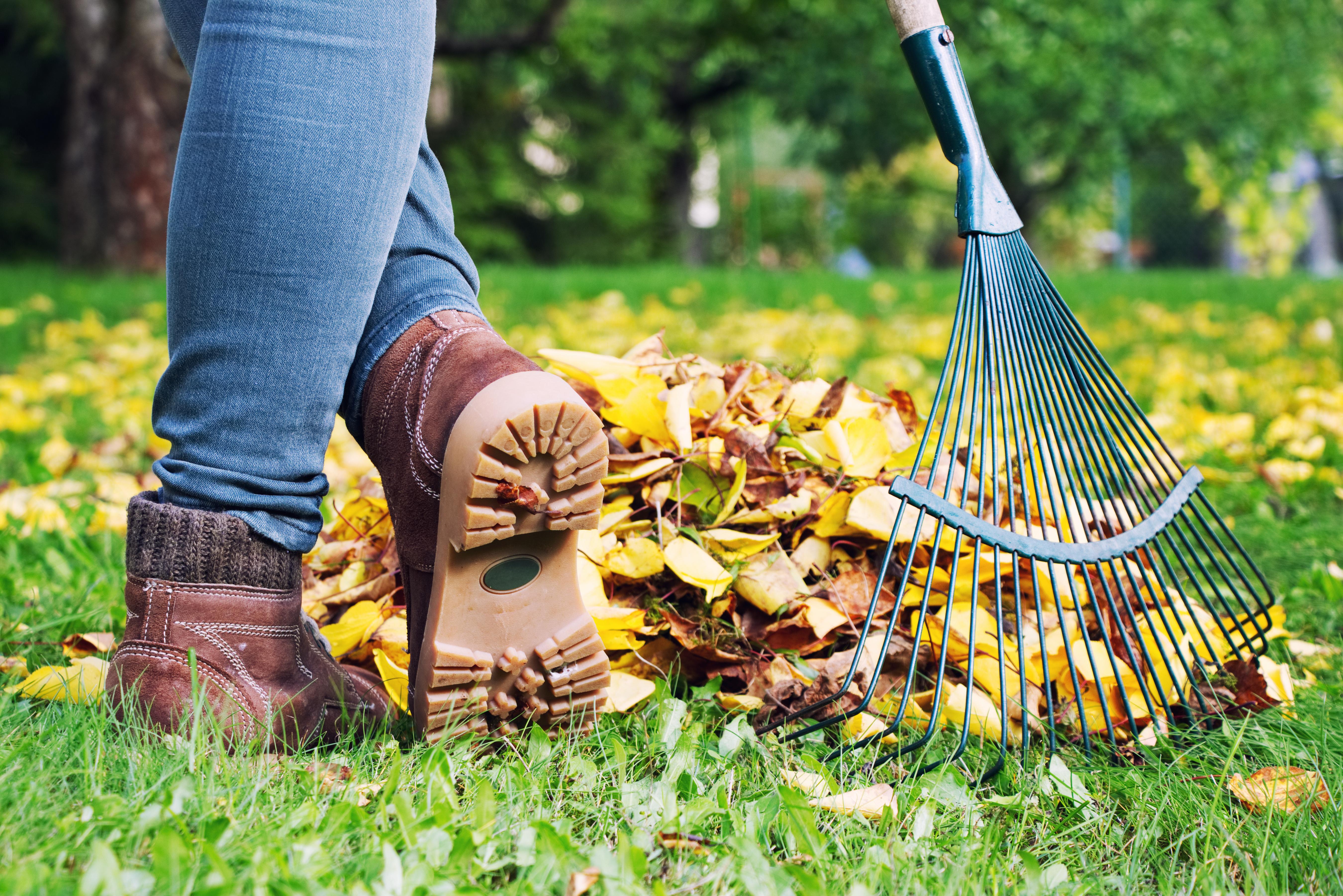 Home Fall Maintenance